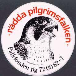 Pilgrimsfalk klistermarke